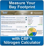 measure your bay footprint