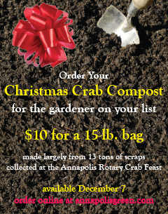 christmas crab compost