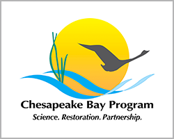 chesapeake bay program