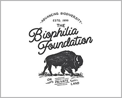 biofilia foundation
