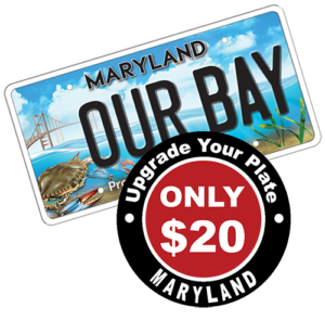 Chesapeake Bay Trust Upgrade Your Plate