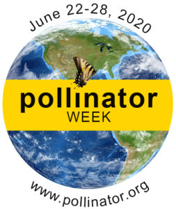 national pollinator week 2020 logo