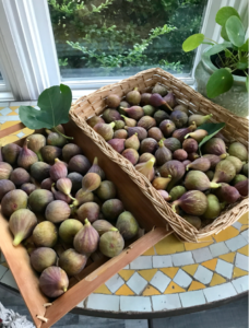 figs in baskets
