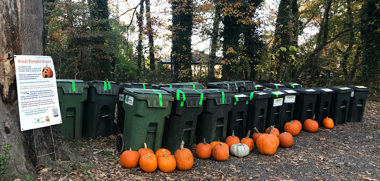 pumpkins & bins in park