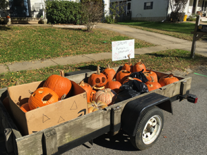 wagon full of collected pumpkins