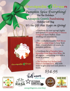 pumpkin spice everything flyer