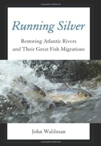 running silver cover
